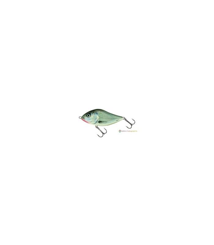 Salmo SLIDER 10 Floating HGS