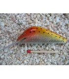 7cm Salmon